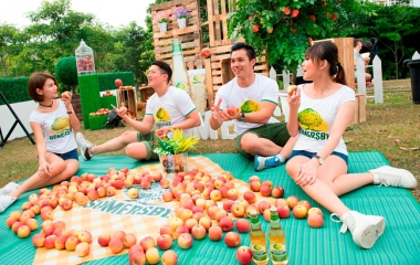SOMERSBY APPLE CIDERS AT RM5 EACH TO CELEBRATE APPLE DAY!