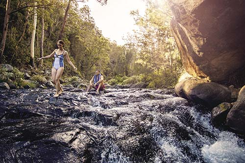 【EMBRACE GOLD COAST】LET'S EXPLORE THE TRUE NATURE IN GOLD COAST