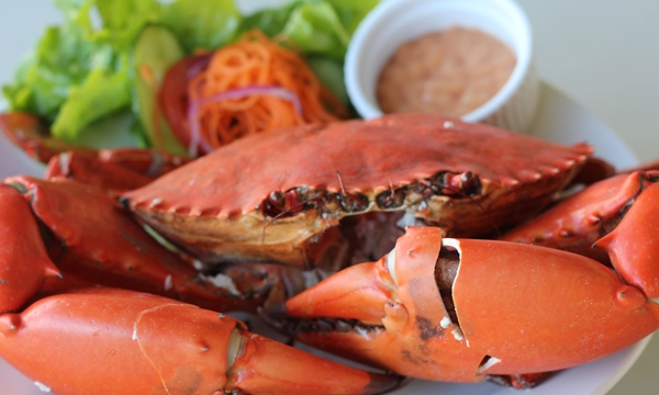 Catch A Crab Tour with Seafood Lunch, Gold Coast