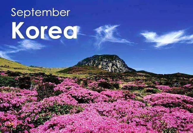 September - Korea